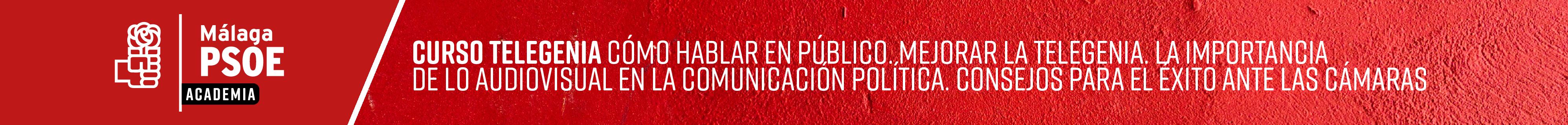 Curso 4: Cómo hablar en público: Mejorar la Telegenia